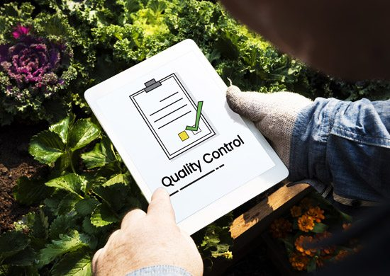 Landscaping company quality assurance